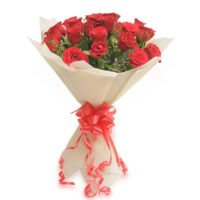 20_red_rose_p._packing_rs_849